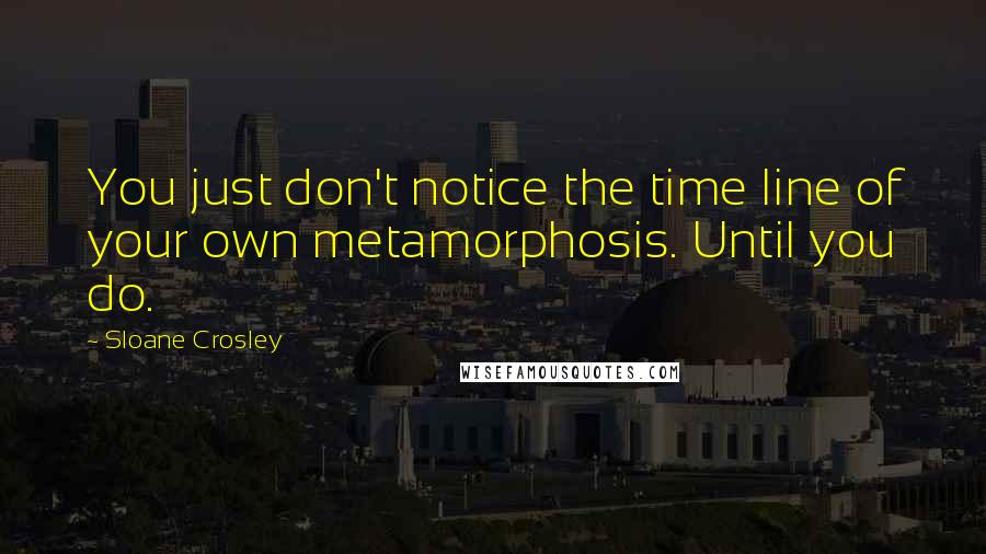 Sloane Crosley quotes: You just don't notice the time line of your own metamorphosis. Until you do.
