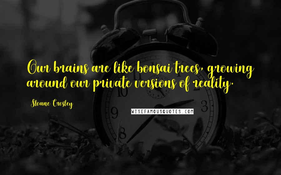 Sloane Crosley quotes: Our brains are like bonsai trees, growing around our private versions of reality.