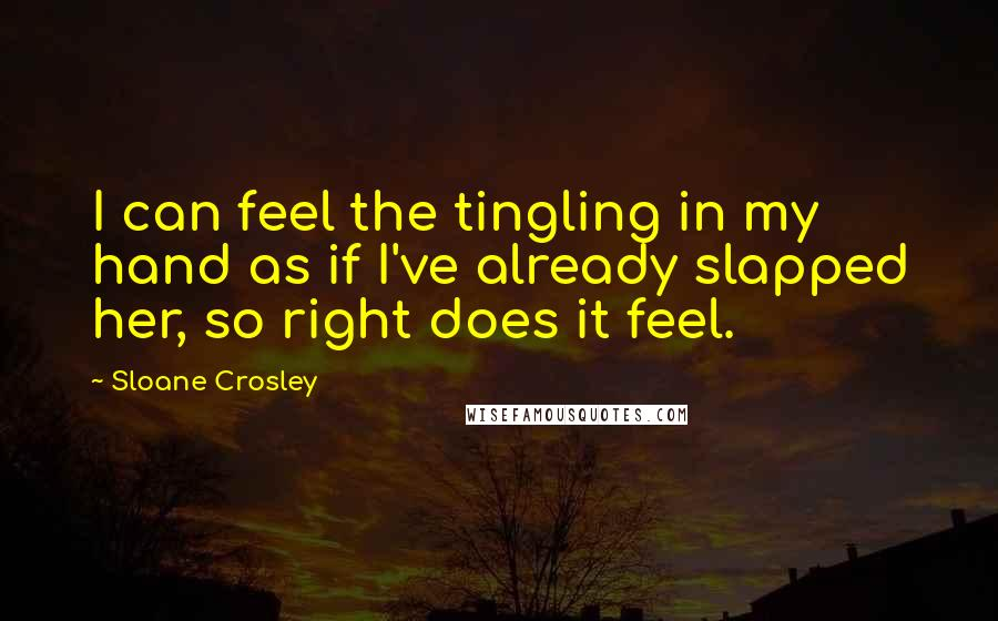 Sloane Crosley quotes: I can feel the tingling in my hand as if I've already slapped her, so right does it feel.