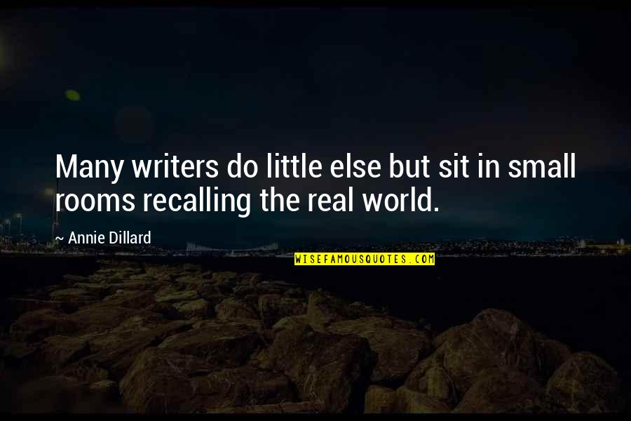 Small Rooms Quotes By Annie Dillard: Many writers do little else but sit in