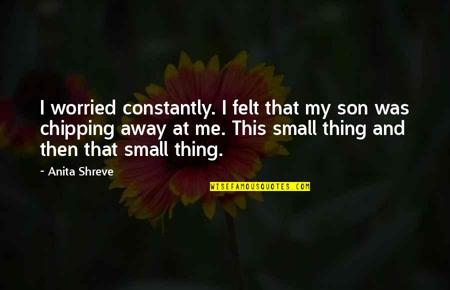 Small Son Quotes By Anita Shreve: I worried constantly. I felt that my son