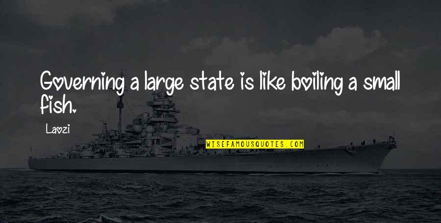 Small States Quotes By Laozi: Governing a large state is like boiling a