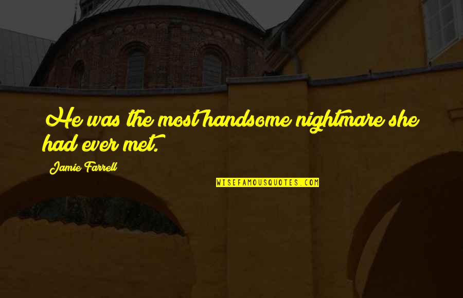 Small Town Funny Quotes By Jamie Farrell: He was the most handsome nightmare she had