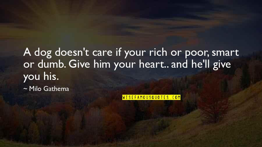 Smart Dogs Quotes By Milo Gathema: A dog doesn't care if your rich or