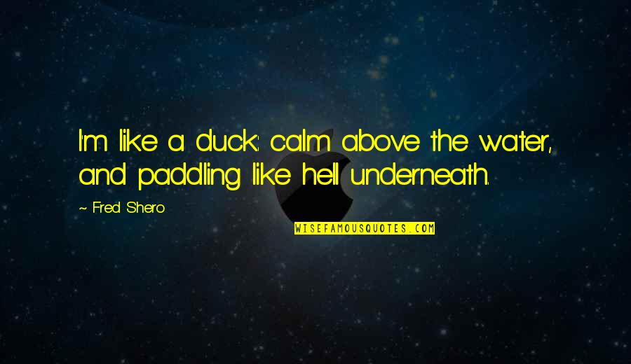 Smear Campaigns Quotes By Fred Shero: I'm like a duck: calm above the water,