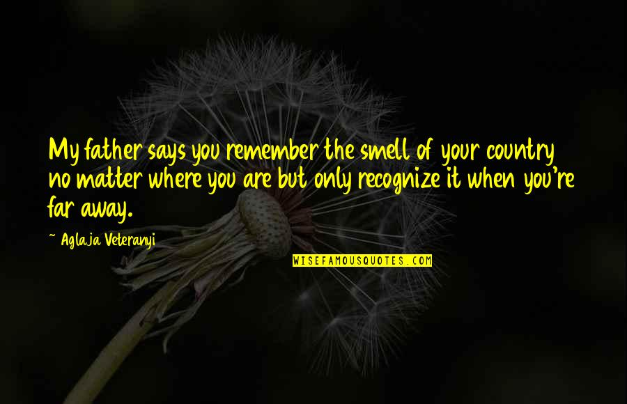Smell Of Home Quotes By Aglaja Veteranyi: My father says you remember the smell of