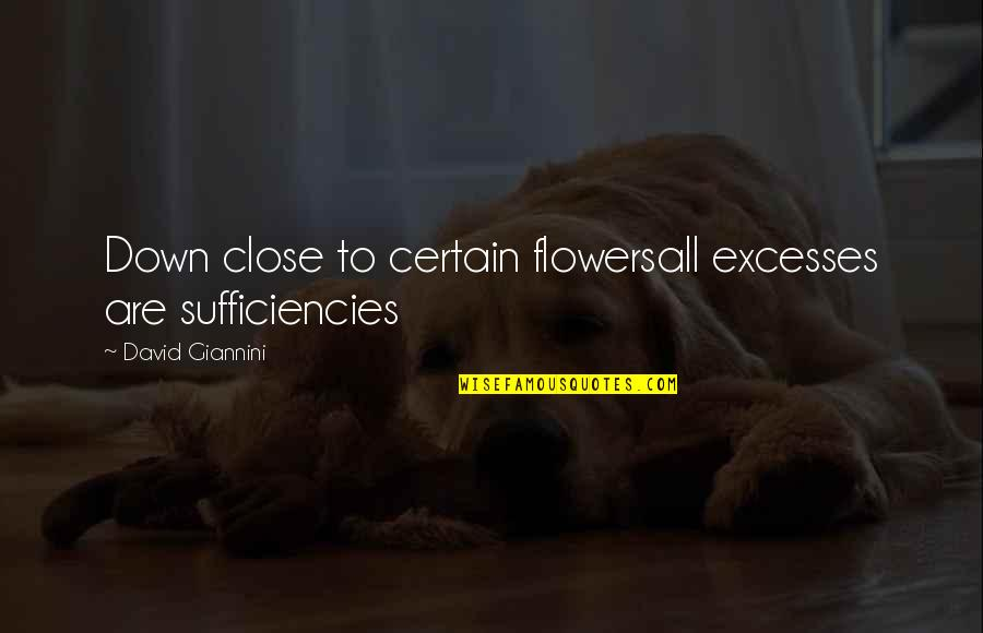 Smelling The Flowers Quotes By David Giannini: Down close to certain flowersall excesses are sufficiencies