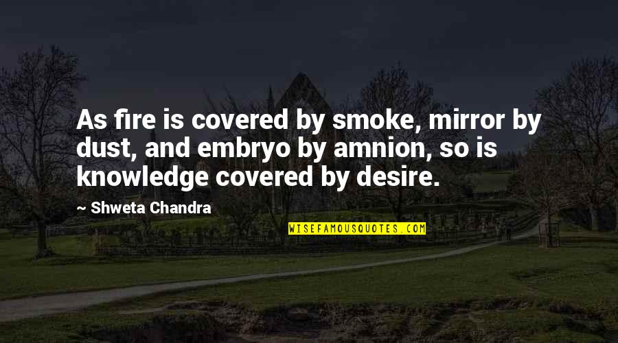 Smoke And Fire Quotes By Shweta Chandra: As fire is covered by smoke, mirror by