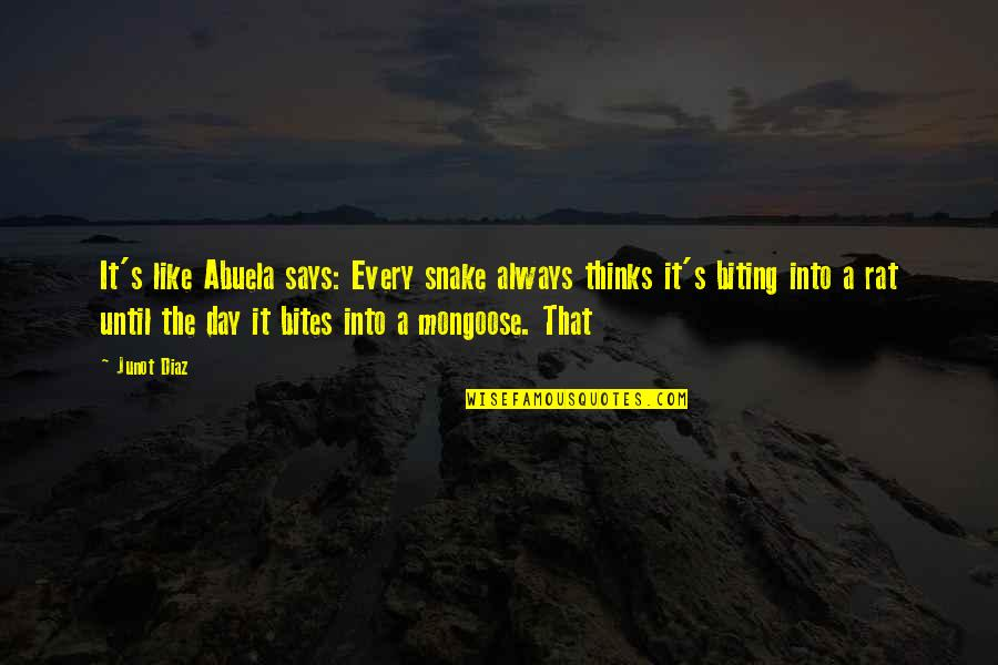 Snake And Mongoose Quotes By Junot Diaz: It's like Abuela says: Every snake always thinks