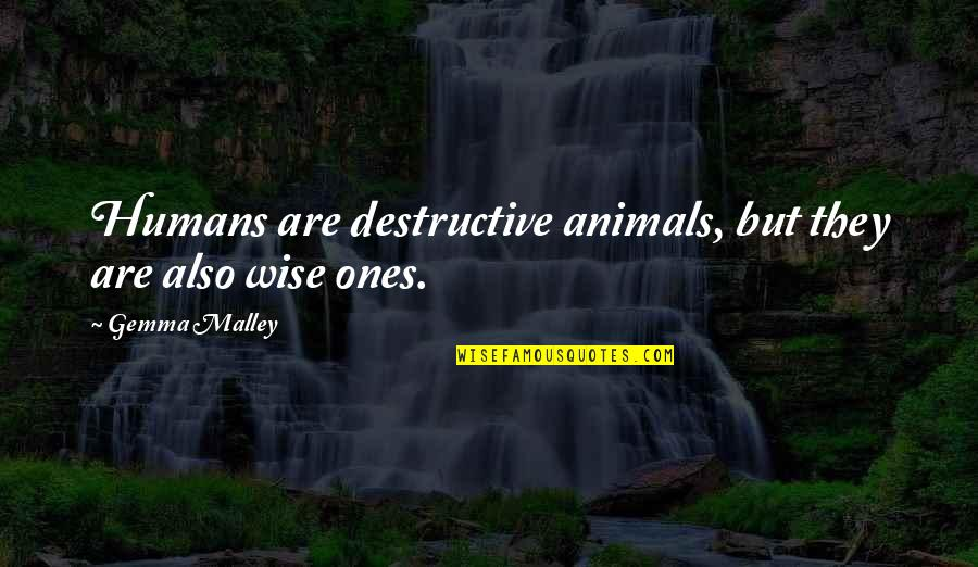 Snappee Quotes By Gemma Malley: Humans are destructive animals, but they are also