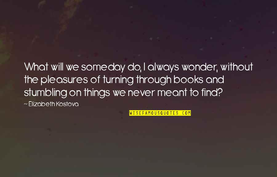Snapping Turtles Quotes By Elizabeth Kostova: What will we someday do, I always wonder,