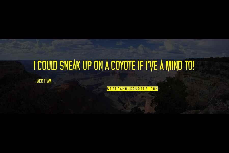 Sneak Out Quotes By Jack Elam: I could sneak up on a coyote if