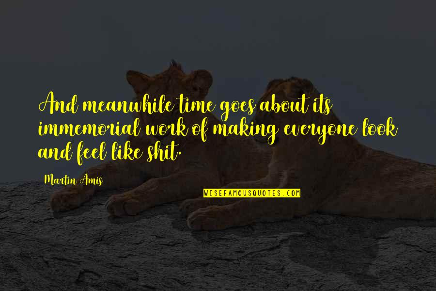 Snow Quotes And Quotes By Martin Amis: And meanwhile time goes about its immemorial work