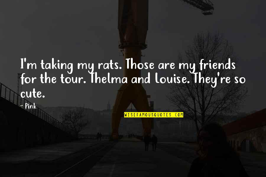 So Cute Quotes By Pink: I'm taking my rats. Those are my friends
