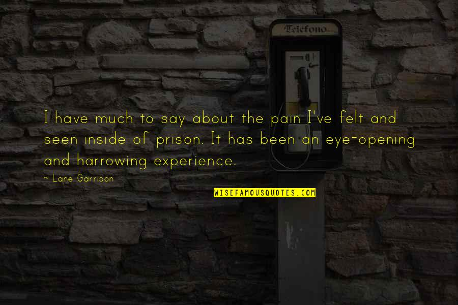 So Much Pain Inside Quotes By Lane Garrison: I have much to say about the pain