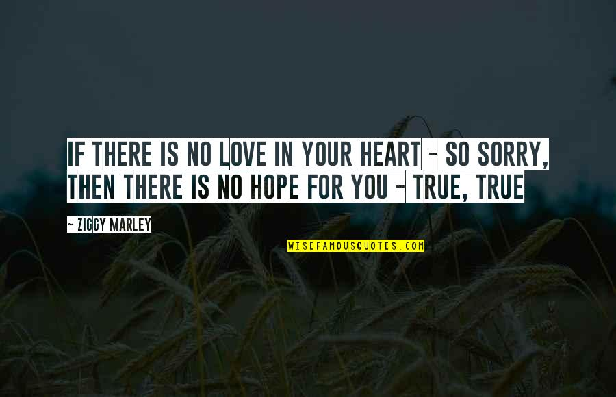So So True Quotes By Ziggy Marley: If there is no love in your heart
