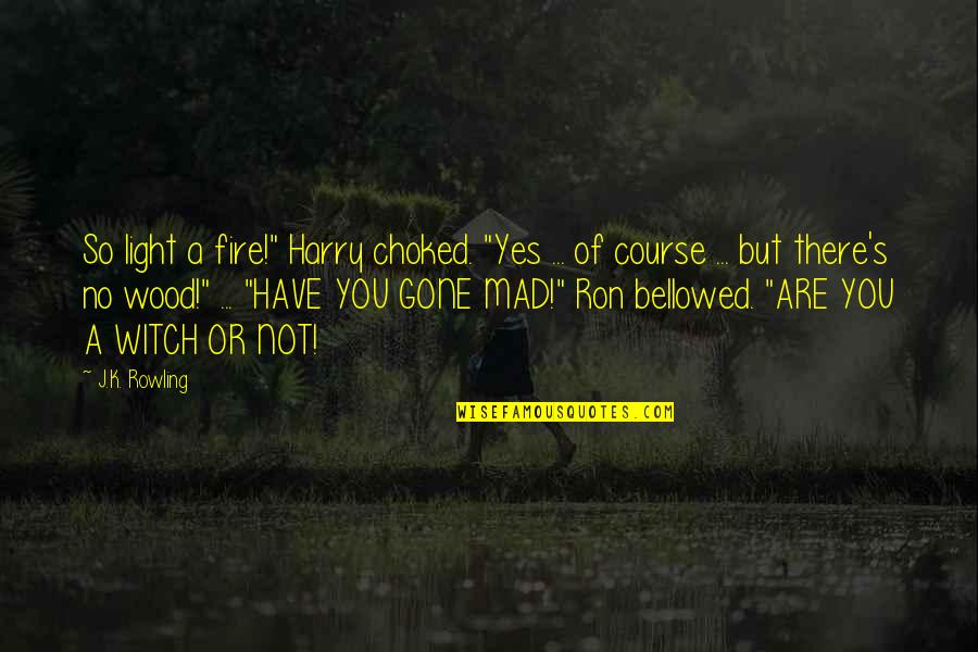 "So You Mad Quotes By J.K. Rowling: So light a fire!"" Harry choked. ""Yes ..."