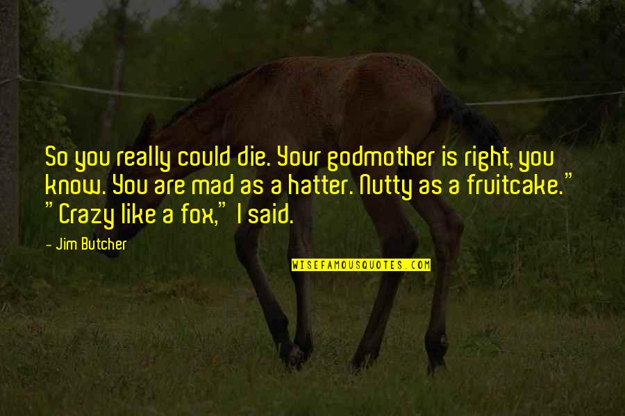 So You Mad Quotes By Jim Butcher: So you really could die. Your godmother is