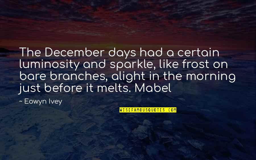 Soapstone Quotes By Eowyn Ivey: The December days had a certain luminosity and