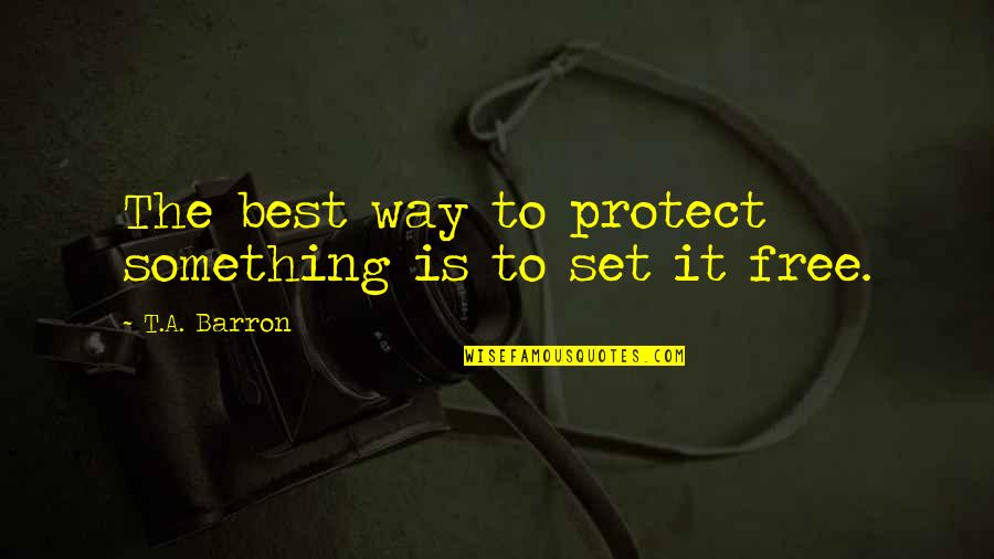 Soar Above Quotes By T.A. Barron: The best way to protect something is to