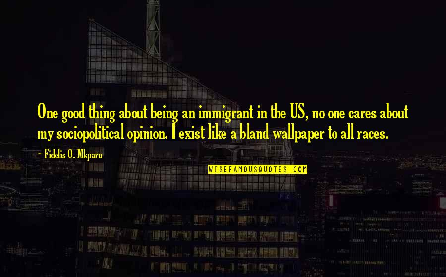 Social Commentary Quotes By Fidelis O. Mkparu: One good thing about being an immigrant in