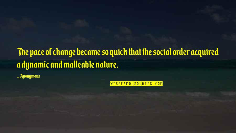 Social Order Quotes By Anonymous: The pace of change became so quick that