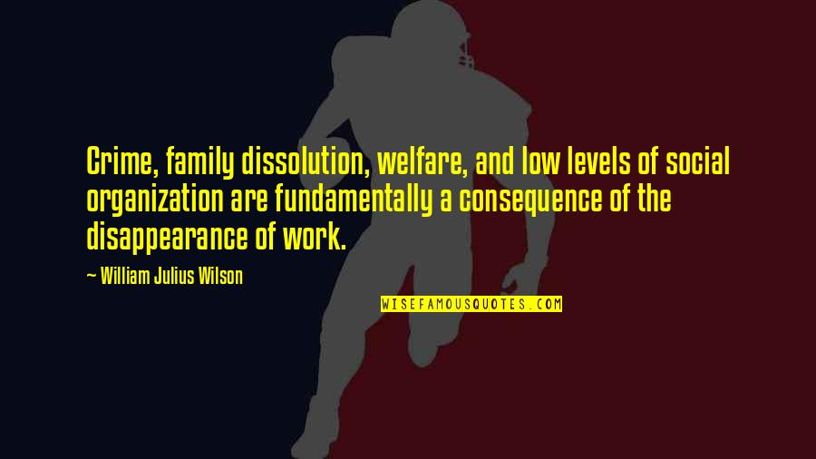 Social Welfare Quotes By William Julius Wilson: Crime, family dissolution, welfare, and low levels of