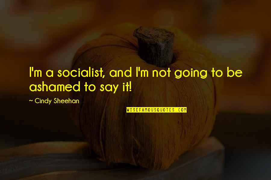Socialist Quotes By Cindy Sheehan: I'm a socialist, and I'm not going to