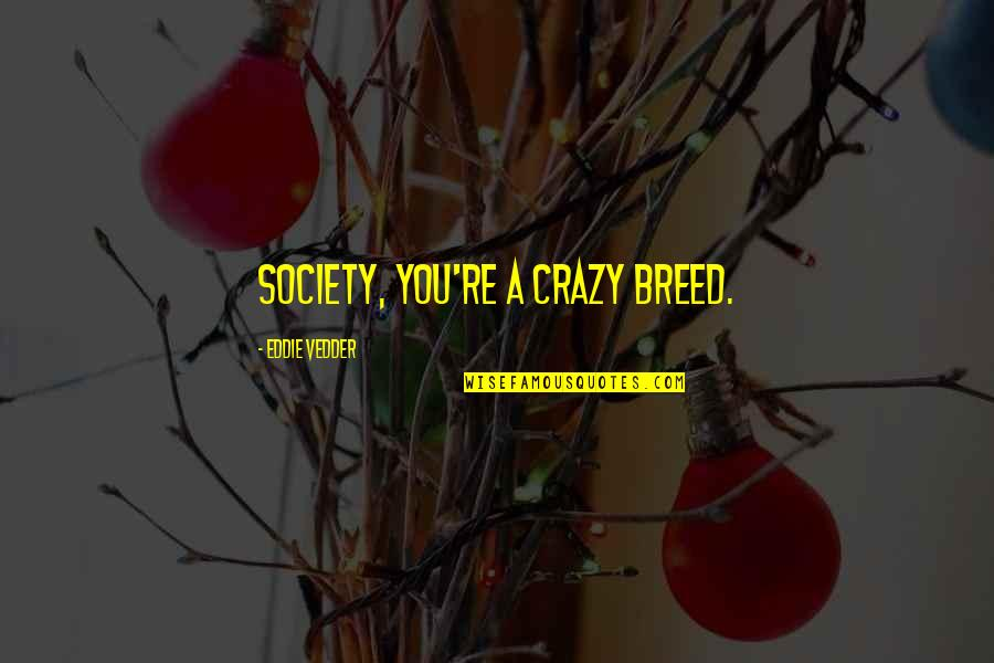 Society In Into The Wild Quotes By Eddie Vedder: Society, you're a crazy breed.