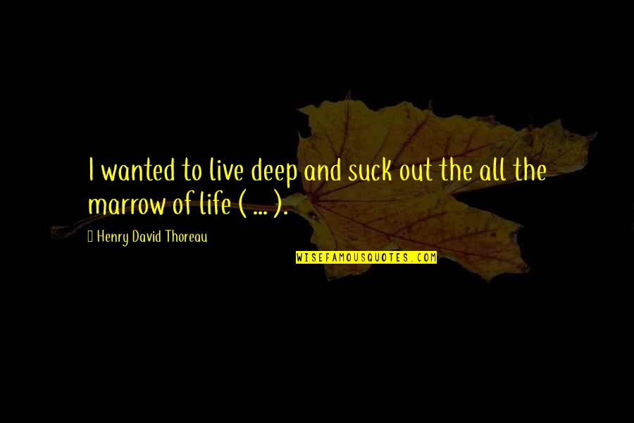 Society Is Dead Quotes By Henry David Thoreau: I wanted to live deep and suck out