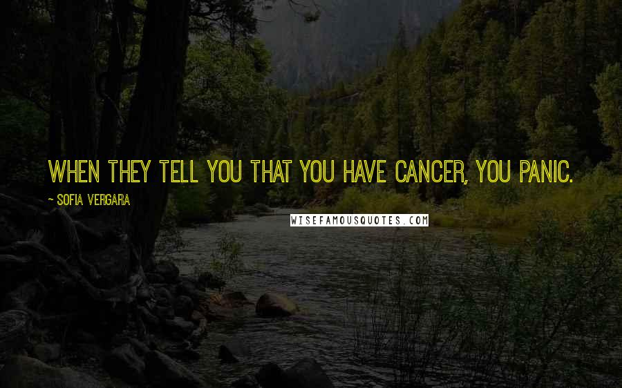 Sofia Vergara quotes: When they tell you that you have cancer, you panic.