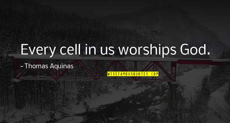 Solange Ich Lebe Quotes By Thomas Aquinas: Every cell in us worships God.