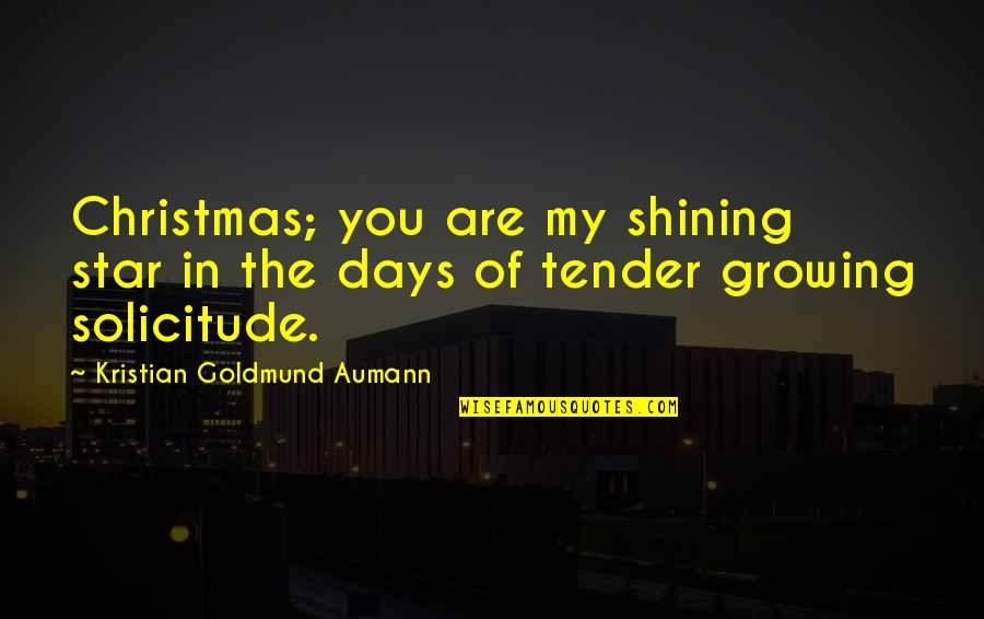 Solicitude Quotes By Kristian Goldmund Aumann: Christmas; you are my shining star in the