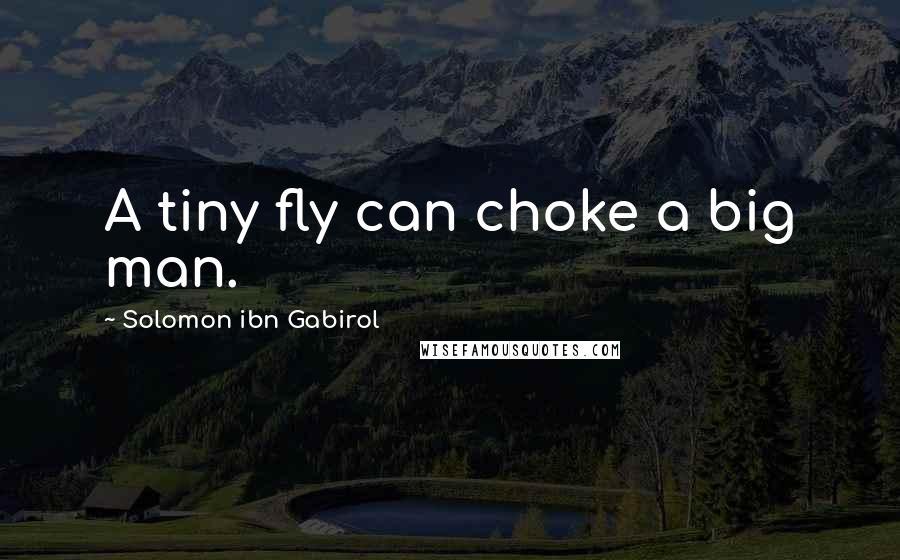 Solomon Ibn Gabirol quotes: A tiny fly can choke a big man.