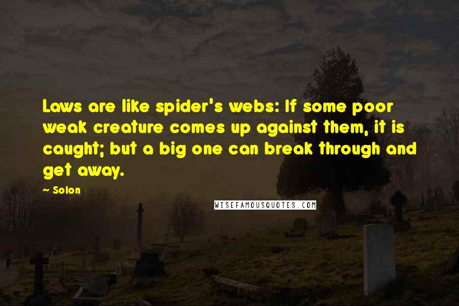 Solon quotes: Laws are like spider's webs: If some poor weak creature comes up against them, it is caught; but a big one can break through and get away.