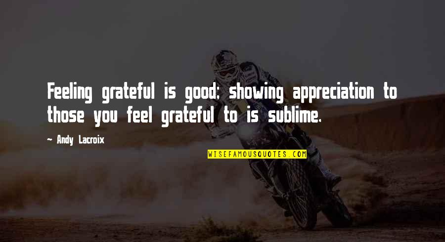 Some Good Feeling Quotes By Andy Lacroix: Feeling grateful is good; showing appreciation to those
