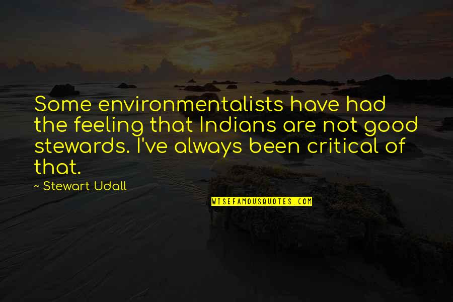 Some Good Feeling Quotes By Stewart Udall: Some environmentalists have had the feeling that Indians