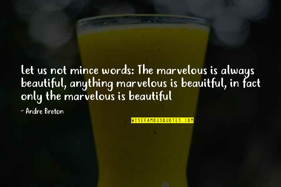 Some Marvelous Quotes By Andre Breton: Let us not mince words: The marvelous is