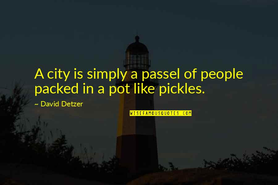 Someday I Will Find The Right Guy Quotes By David Detzer: A city is simply a passel of people