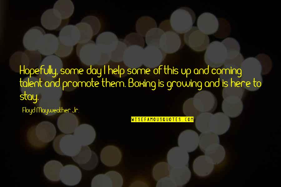 Someday I Will Find The Right Guy Quotes By Floyd Mayweather Jr.: Hopefully, some day I help some of this