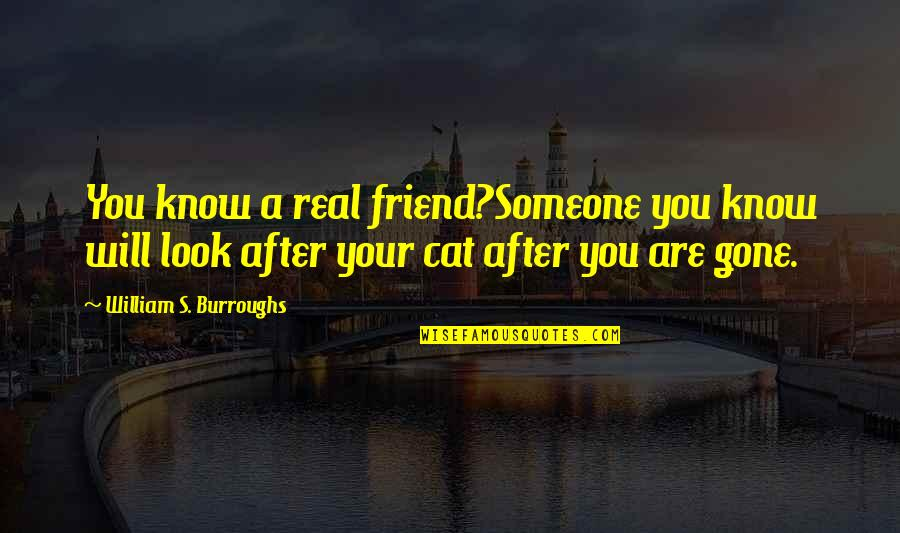 Someone That's Gone Quotes By William S. Burroughs: You know a real friend?Someone you know will