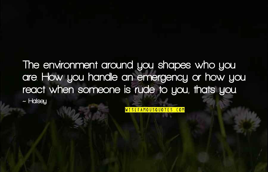 Someone Who Is There For You Quotes By Halsey: The environment around you shapes who you are.