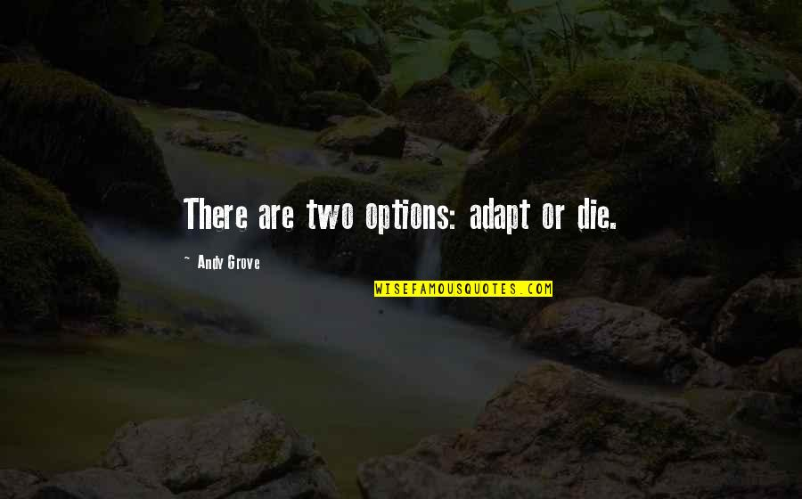 Someone Who Truly Loves You Quotes By Andy Grove: There are two options: adapt or die.