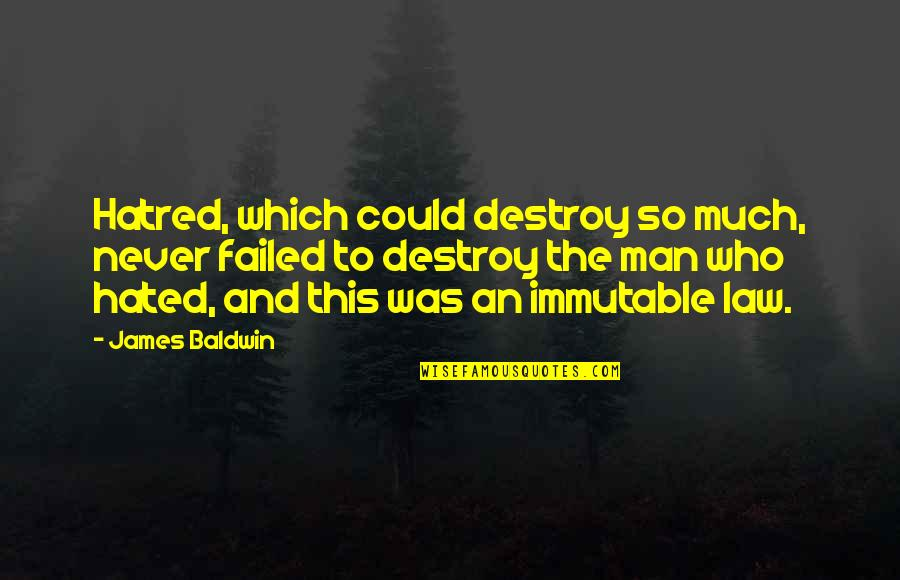 Sometimes I Feel So Lucky Quotes By James Baldwin: Hatred, which could destroy so much, never failed