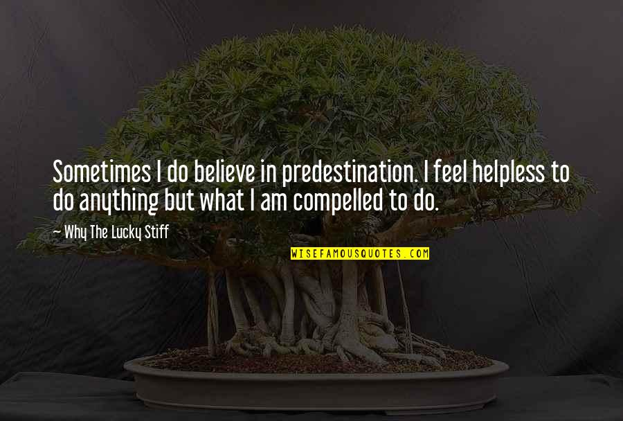 Sometimes I Feel So Lucky Quotes By Why The Lucky Stiff: Sometimes I do believe in predestination. I feel