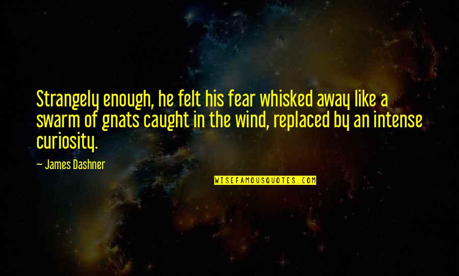 Sometimes You Just Gotta Move On Quotes By James Dashner: Strangely enough, he felt his fear whisked away