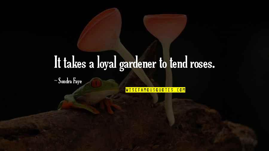 Sondra Quotes By Sondra Faye: It takes a loyal gardener to tend roses.