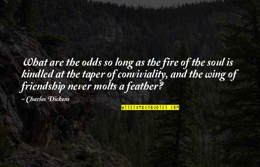 Soul Fire Quotes By Charles Dickens: What are the odds so long as the