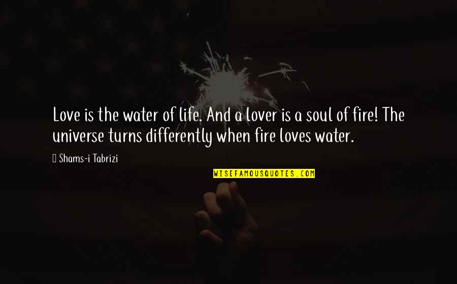 Soul Fire Quotes By Shams-i Tabrizi: Love is the water of life. And a
