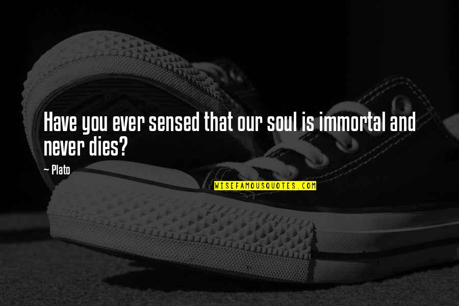 Soul Never Dies Quotes By Plato: Have you ever sensed that our soul is